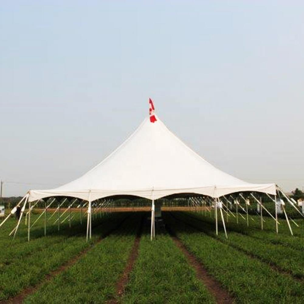 50-100 People small party wedding peg and pole tents