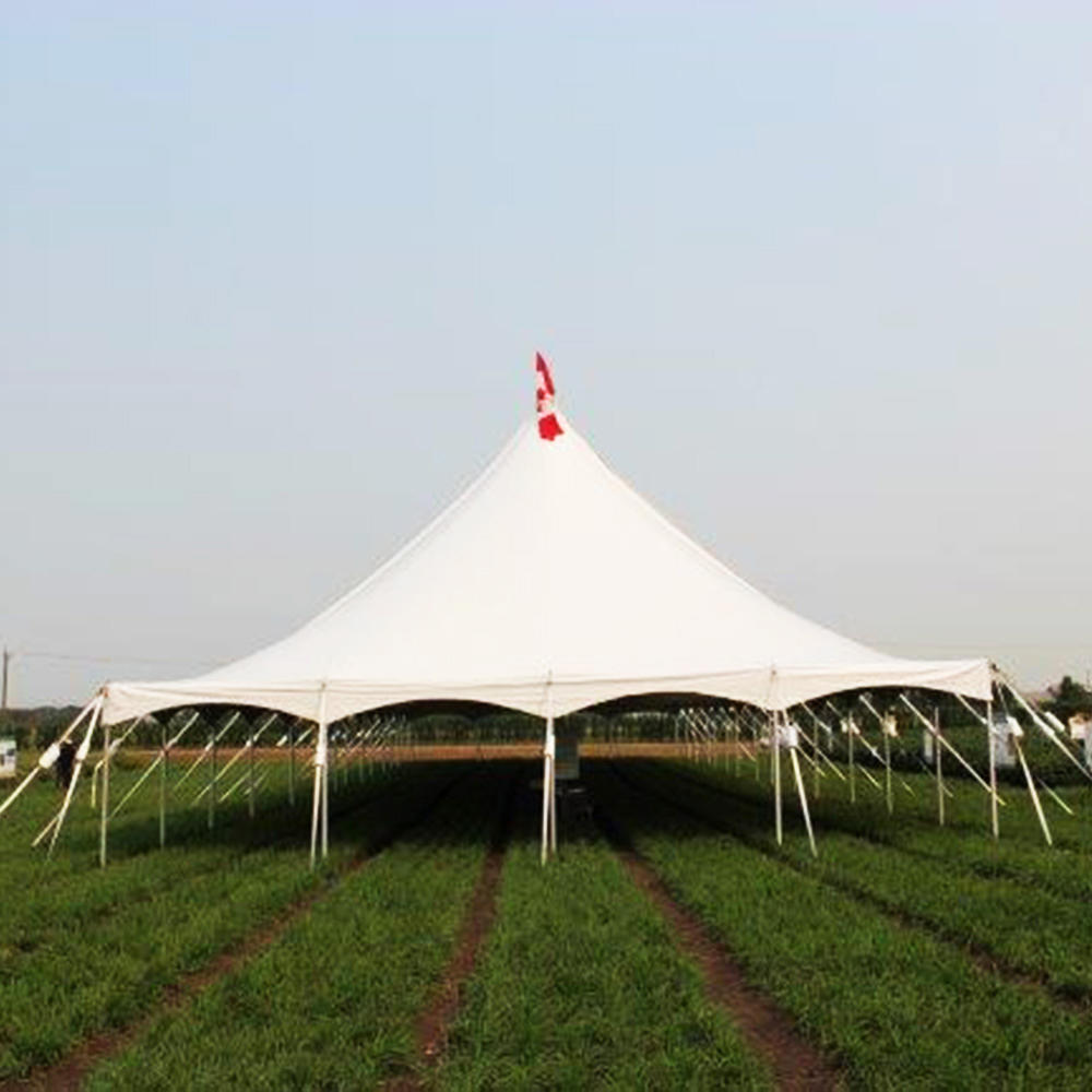 500 People tent Evening Banquet events Peg and pole Tent with factory price