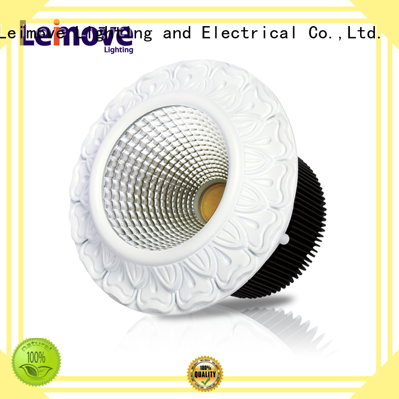 Leimove years warranty outdoor led downlights surface mounted for sale