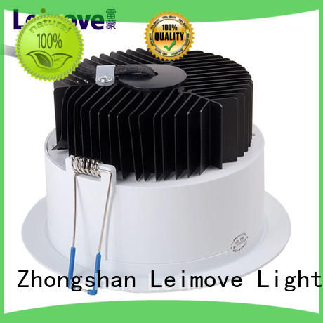 Leimove ceiling decoration dimmable led downlights surface mounted for wholesale
