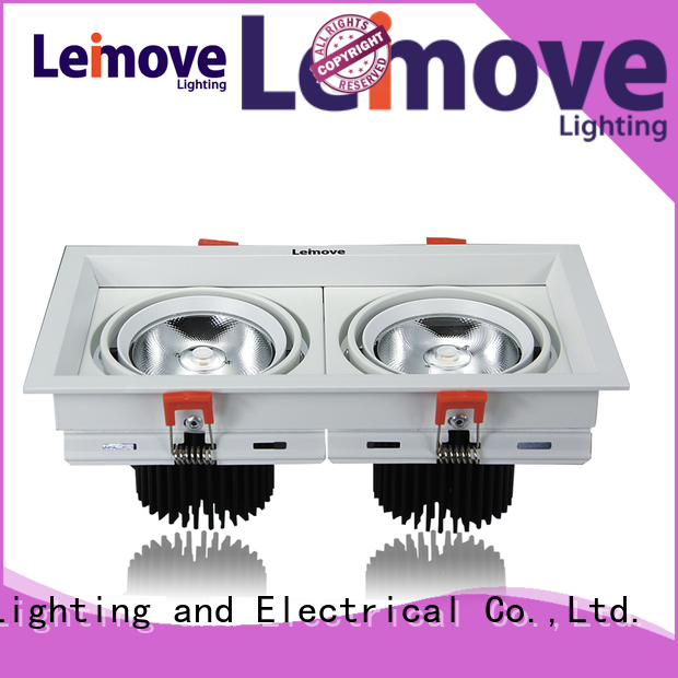 Leimove ceiling decoration led recessed downlights custom made for wholesale