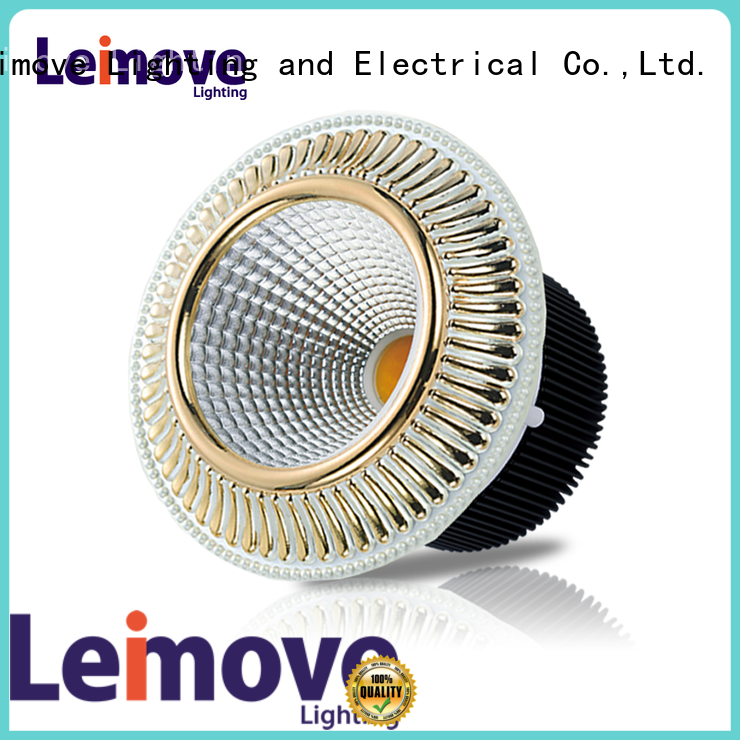 Leimove energy-saving led down light custom made for customization