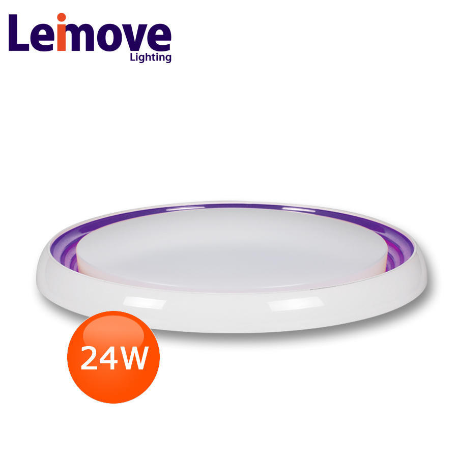 leimove fiber optical ceiling light