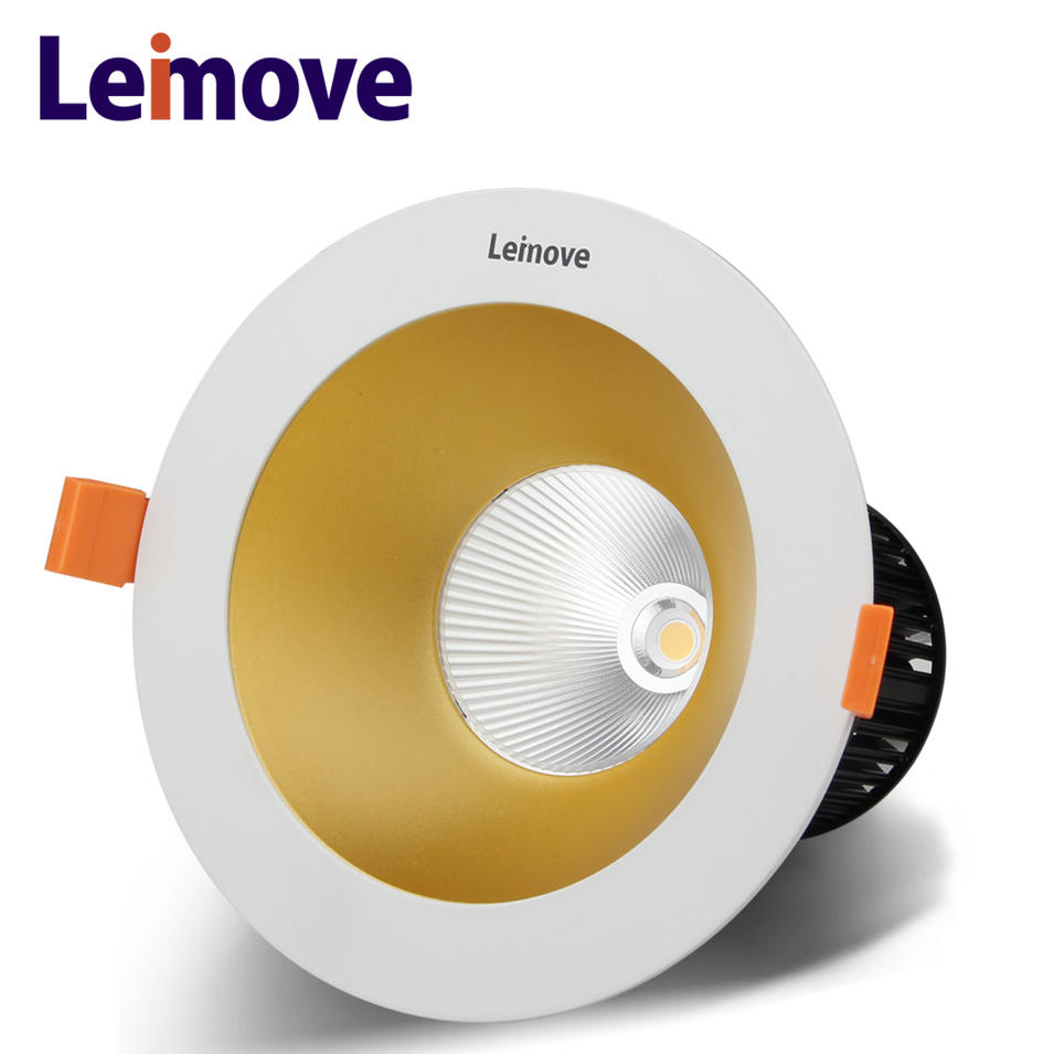 15w cob chip led downlight,cob new 6-25w directional fire rated led downlight