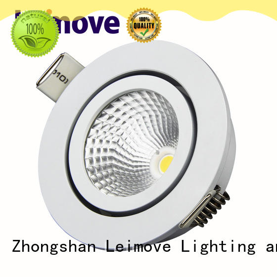 Leimove cob led down light surface mounted for customization