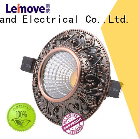Leimove commercial illumination outdoor led downlights custom made for sale