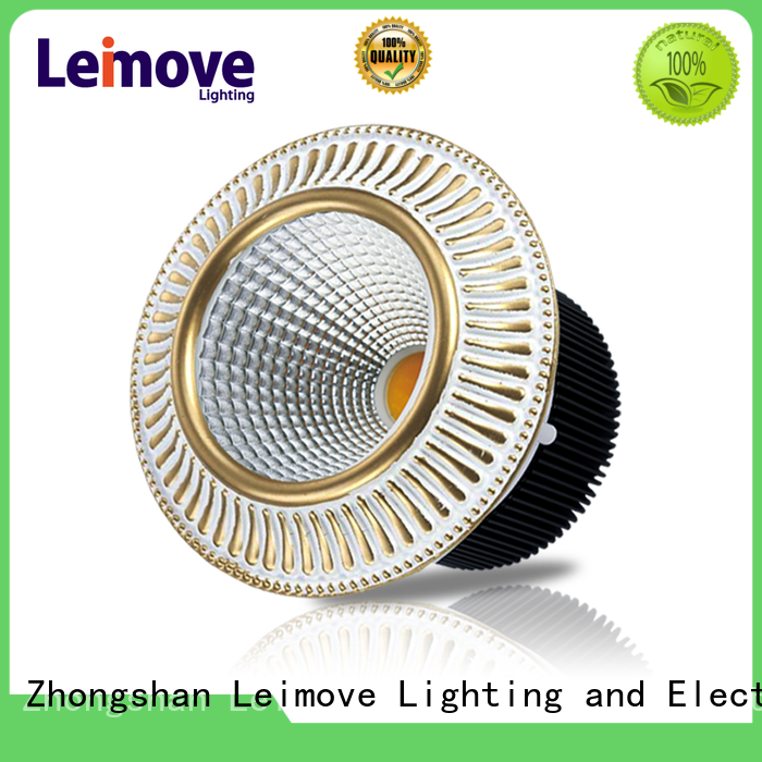 Leimove years warranty outdoor led downlights surface mounted for customization