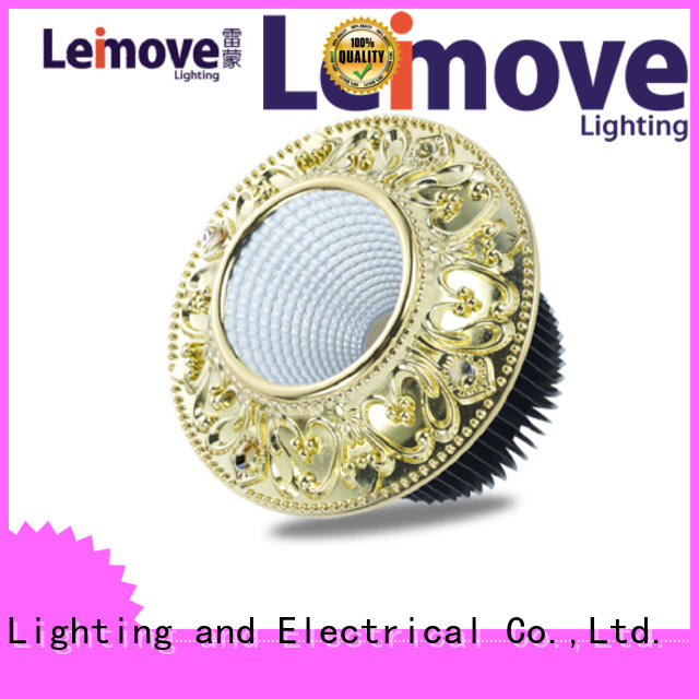 Leimove commercial illumination outdoor led downlights surface mounted for customization