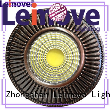 Leimove ceiling decoration adjustable led downlights surface mounted for customization