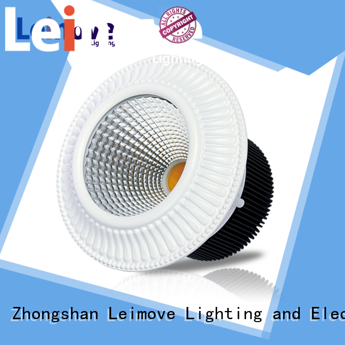 Leimove years warranty outdoor led downlights custom made for sale