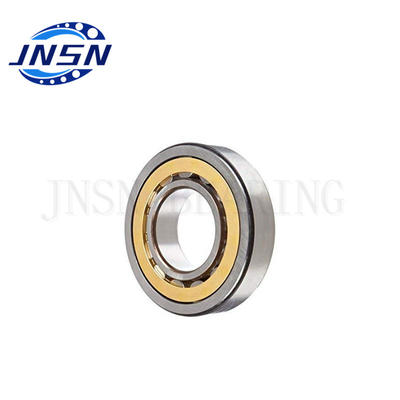 Cylindrical Roller Bearing NF307 Size 35x80x21 mm